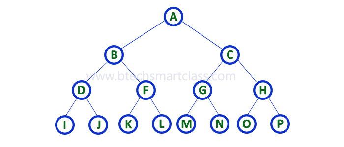 Data Structures | Binary Tree in Data structures | Binary