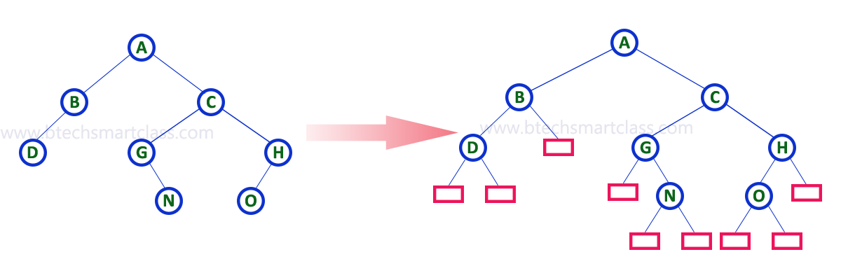 Data Structures | Binary Tree in Data structures | Binary tree